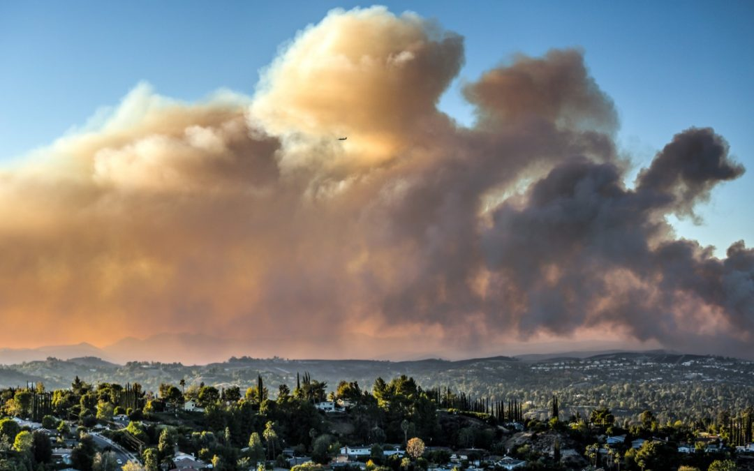 RCD's Newest Department Helps Community Prepare for Fire Season
