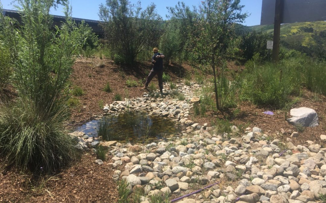 A Brief Update on the Wildlife Crossing at Liberty Canyon